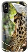 Giraffe Eye IPhone Case