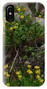 Glacier Lily 4 IPhone Case