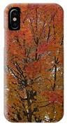 Glorious Autumn IPhone Case