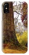 Glorious Fall In Benmore Botanical Garden. Scotland IPhone Case
