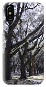 Glorious Live Oaks With Framing IPhone Case