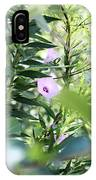 Glory In The Morning Sun 2016 IPhone Case
