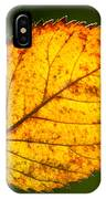 Glowing Autumn Leaf IPhone Case