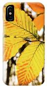 Glowing Beech Leaf Branch IPhone Case