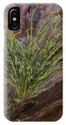Glowing Ocotillo IPhone Case
