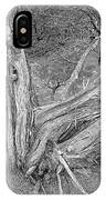 Gnarled Cedar Stump IPhone Case