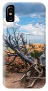 Gnarly - Bryce Canyon IPhone Case