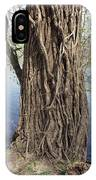 Gnarly Tree 2 IPhone Case