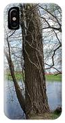 Gnarly Tree 4 IPhone Case