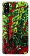 God's Kitchen Series No 7 Swiss Chard IPhone Case