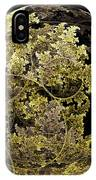 Gold And Silver IPhone Case