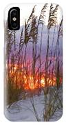 Golden Amber IPhone Case