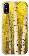 Golden Aspens IPhone Case