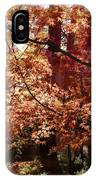 Golden Autumn Sunshine IPhone Case