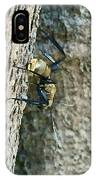 Golden Carpenter Ant  IPhone Case