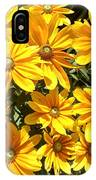Golden Eyed Susans IPhone Case