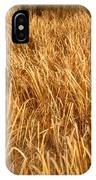 Golden Field IPhone Case