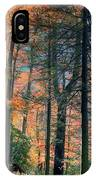 Golden Forest Path IPhone Case