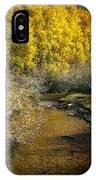 Golden Glow IPhone Case