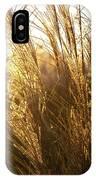 Golden Grass In Sunset IPhone Case