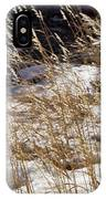 Golden Grasses In Sun And Snow IPhone Case