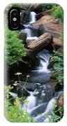 Golden Trout Wilderness IPhone Case