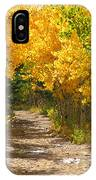 Golden Tunnel IPhone Case