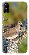 Good Mourning Dove By H H Photography Of Florida IPhone Case