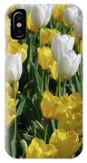 Gorgeous Blooming Field Of White And Yellow Tulips IPhone Case