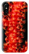 Gorgonian Coral IPhone Case