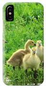 Gosling Shore Side IPhone Case