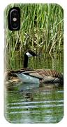 Goslings In Tow IPhone Case