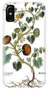Gourd, 1735 IPhone Case