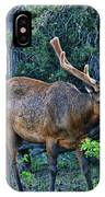 Grand Canyon # 33 - Grazing Elk IPhone Case