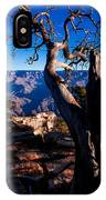 Grand Canyon 27 IPhone Case