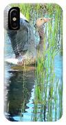 Grand Spring Goose   IPhone Case