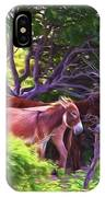 Grand Turk Donkeys In The Shade IPhone Case