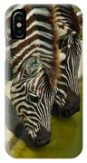 Grants Zebras - Thirst Quencher IPhone Case