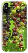 Grape Harvest IPhone Case