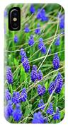 Grape Hyacinth IPhone Case