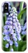 Grape Hyacinths Closeup IPhone Case