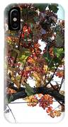 Grape Vine In Autumn IPhone Case