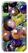 Grape Vine Still Life IPhone Case
