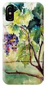 Grape Vines At Otter Creek IPhone Case