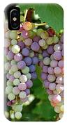 Grapes In Color  IPhone X Case