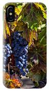 Grapes Of The Napa Valley IPhone Case