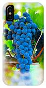 Grapes Of The Vine IPhone Case