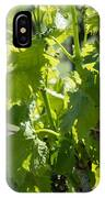 Grapevine In Early Spring IPhone Case