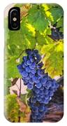 Grapevine With Texture IPhone Case