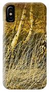 Grass And Birch IPhone Case